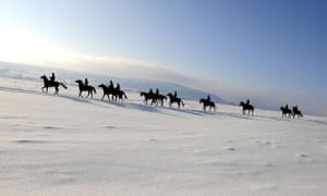 Gallery Snow updated: Horses Exercise in the snow at Middleham gallops.