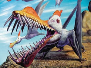 Gallery Dinosaurs: Image released by dinosaur artist Luis Rey of a new species of pterosaur