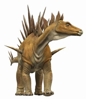 Gallery Dinosaurs: A Tuojiangosaurus with a thorny tail and rows of bony plates