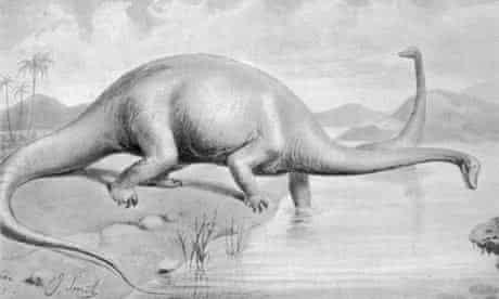Dinosaur Diplodocus carnegii