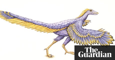 From dinosaurs to birds: The evolutionary link | Science ...