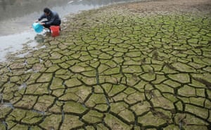 Gallery Severe Drought: A farmer collects water from a partially dried-up pond