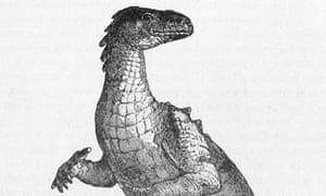 Illustration of Iguanodon