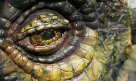 Close-up of the armoured eye of an Ankylosaurus dinosaur