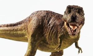 Model of a Tyrannosaurus rex (T. rex)