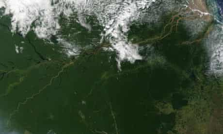 The Amazon Rainforest of Nothern Brazil
