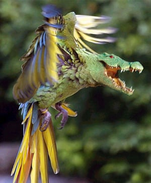 Hybrid animals photo competition: Parrodile