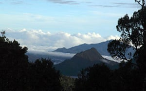 New Species Discovered: The Kaijende highlands and Hewa wilderness Papua New Guinea