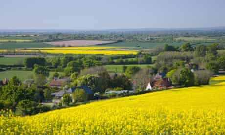 South Downs landscape with oilseed rape field near Milton Street, Eastbourne, Sussex, England, UK.