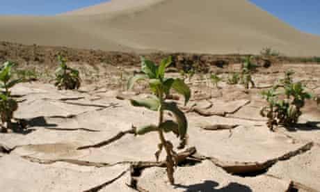 China desert