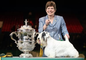Crufts winners: Charmin, the Sealyham Terrier and his handler Margery Good