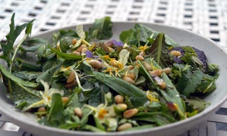 A spring tonic - a salad made from locally-sourced plants