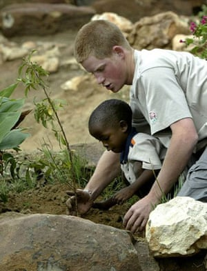 Prince William and Harry: Prince Harry plants a fruit tree in Lesotho