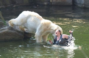 Polar bear attack: A woman jumped into a polar bear enclosure and was mauled by a bear.