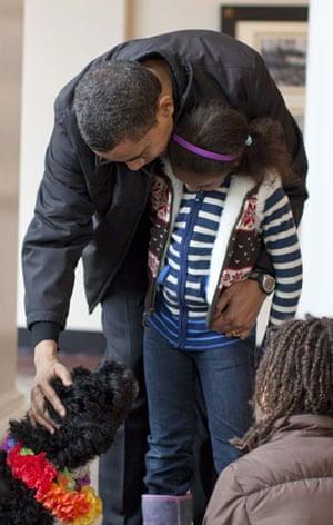 The Obama family's dog Bo: Barack Obama pets Bo