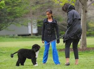 Obama's new dog: Barack Obama and family walk their new dog at the White House