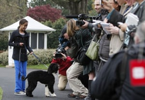 The Obama family dog Bo: Malia takes Bo for a walk on the South Lawn