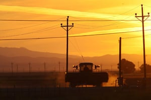 24 hours in pictures: Firebaugh, California, USA:  A farm tractor travels a dirt road.