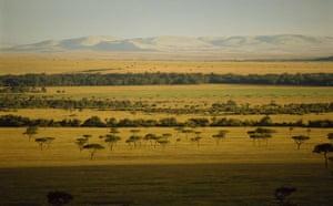 Masai Mara, Kenya: National Reserve