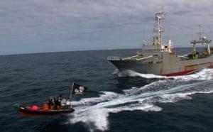 The Steve Irwin chases the Yushin Maru