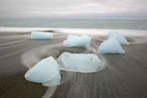 Glaciers under treat: Melting Chunks of Glacier Ice on Beach on South Georgia Island