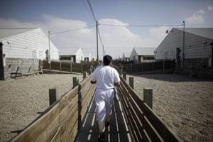 Swine flu La Gloria: An employee works on a pig farm run by Granjas Carroll de Mexico.