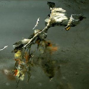 Mineral images: Quartz