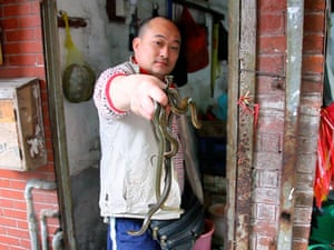 China animal markets: A man holds up snakes for sale as food in China