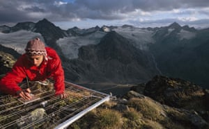 Climate change scientist : Global Warming: Daniela Hohenwallner at Mount Schrankogl, Austria