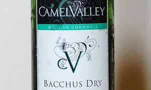 Camel Valley bacchus dry wineCamel Valley bacchus dry wine