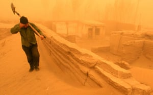 Minqin China: A Chinese farmer walks amid a heavy sand storm