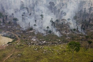 Amazon deforestation: Man made fires to clear the land for cattle or crops