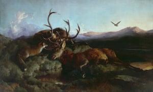 Endless Forms: Charles Darwin, Natural Science, and the Visual Arts, Edwin Landseer