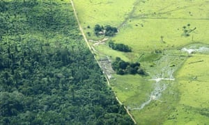 Aerial view of cattle farm in Amazonian deforested jungle close to Maraba