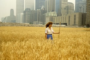 RADICAL NATURE: Agnes Denes: Wheatfield – A Confrontation. Radical Nature at the Barbican