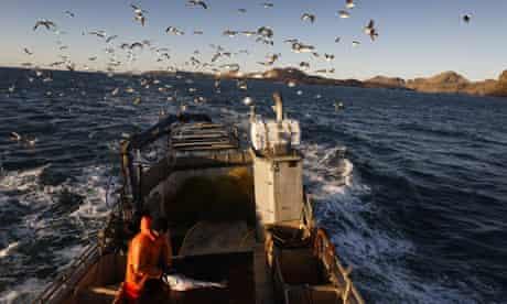 Fishing off of the Vetmannaeyjar Islands