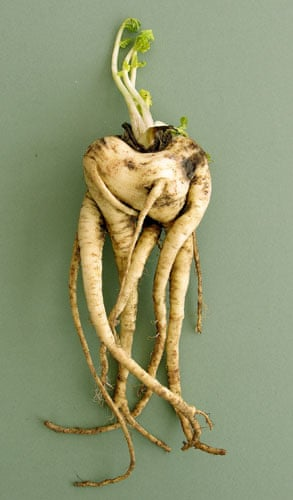 Wonky fruit and veg: Winner of the National Trust ugly vegetable competition