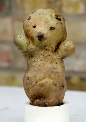 Wonky fruit and veg: A bear-shaped potato