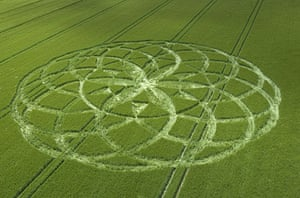 Crop circles: A crop circle in a field of barley at Bishops Cannings near Devizes