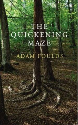 Booker longlist: Adam Foulds: The Quickening Maze