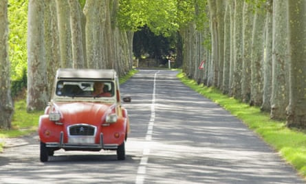 Driving on a tree lined road in France.