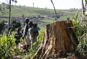 Week in Wildlife: Ogiek tribes and deforestation of Mau Forest in the Rift Valley Kenya