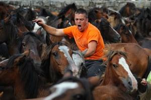 Sabucedo horses: An Aloitador Fighter tries to control a wild horse