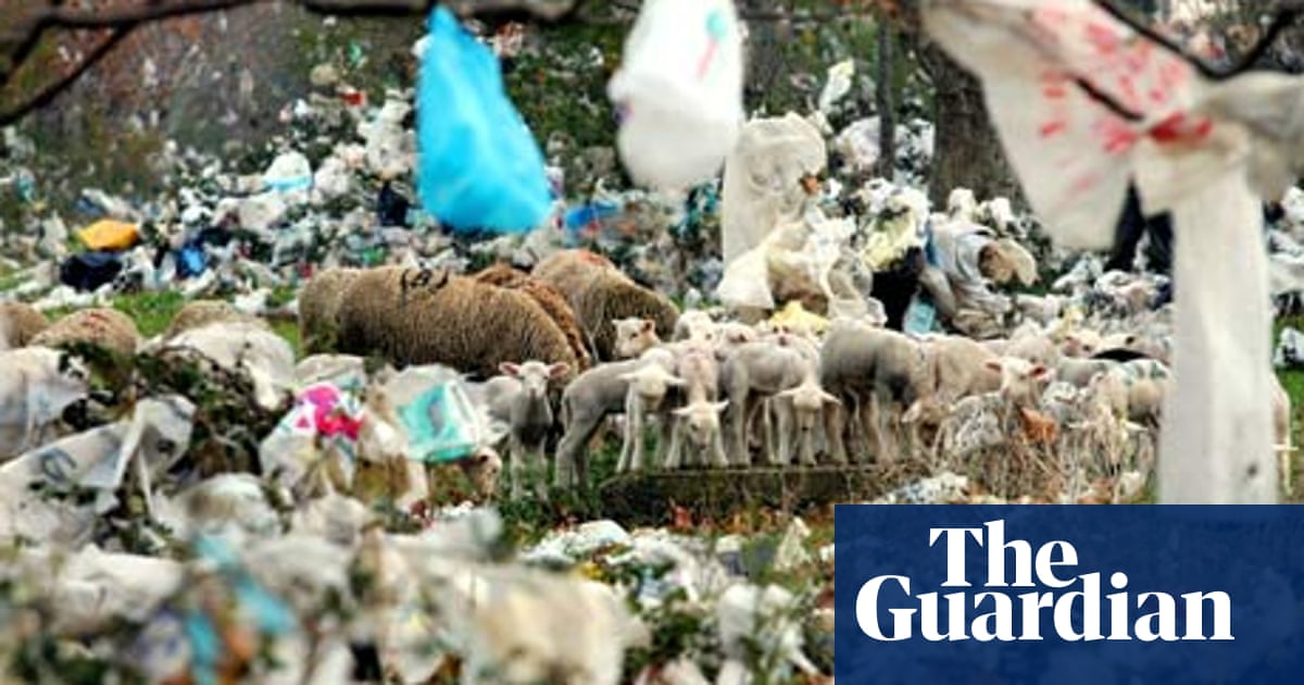Do we really need to ban plastic bags?   Environment   The Guardian