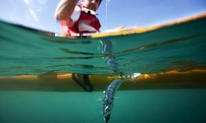 George Monbiot Fishing