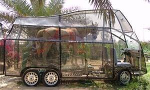 Naturmobil horse-powered car