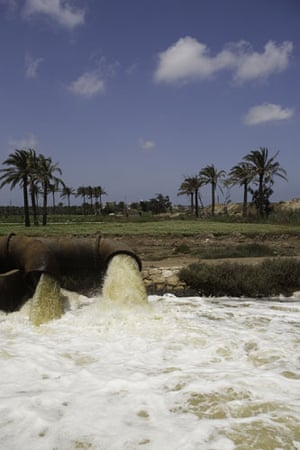 Nile Delta: Polluted waste water from agricultural drainage pumped into the a cana;