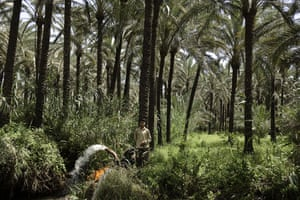 Nile Delta: A farmer pumps water from the canal onto his fields