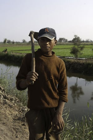 Nile Delta: Mohammed 13, walks back home after working on his family's fields