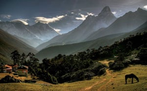 The Eastern Himalayas: New species discovered by WWF